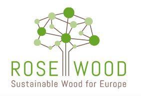 Mit Holzbau die Zukunft gestalten