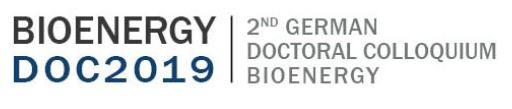 bioenergy 2nd german doctoral