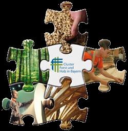 Cluster Puzzle