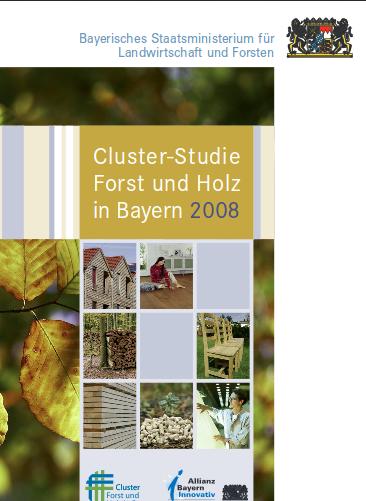 Clusterstudie 2008