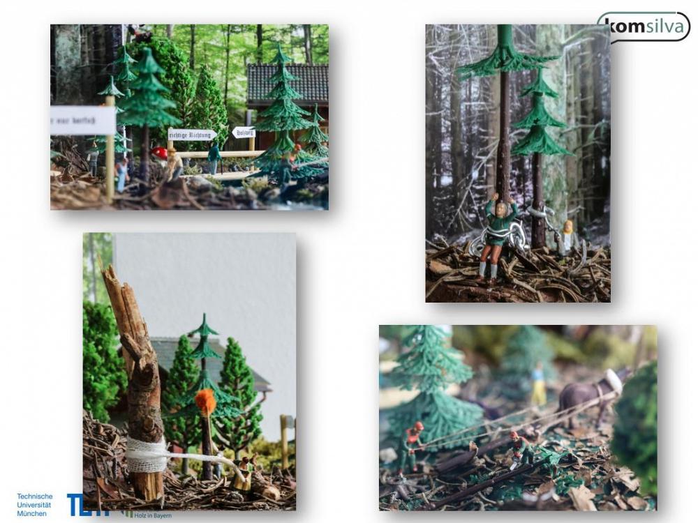 Waldschaufenster TUM Naturschutzwald2