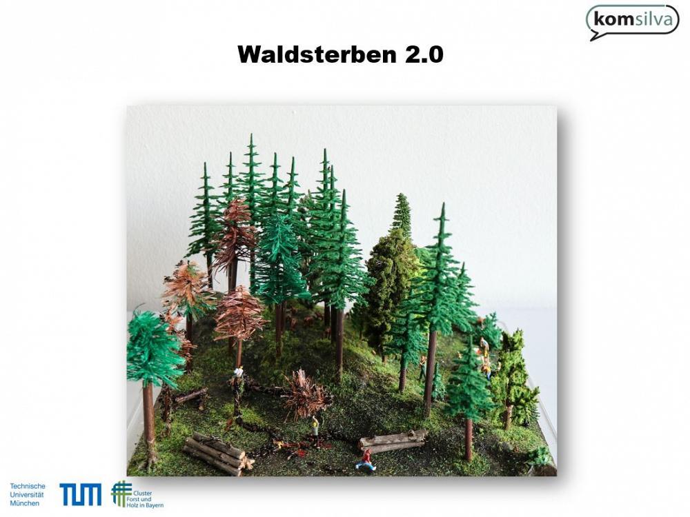 Waldschaufenster TUM Waldsterben1