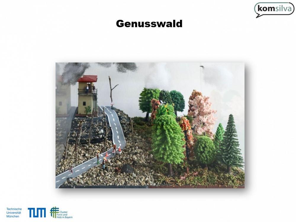 waldschaufenster TUM Genusswald