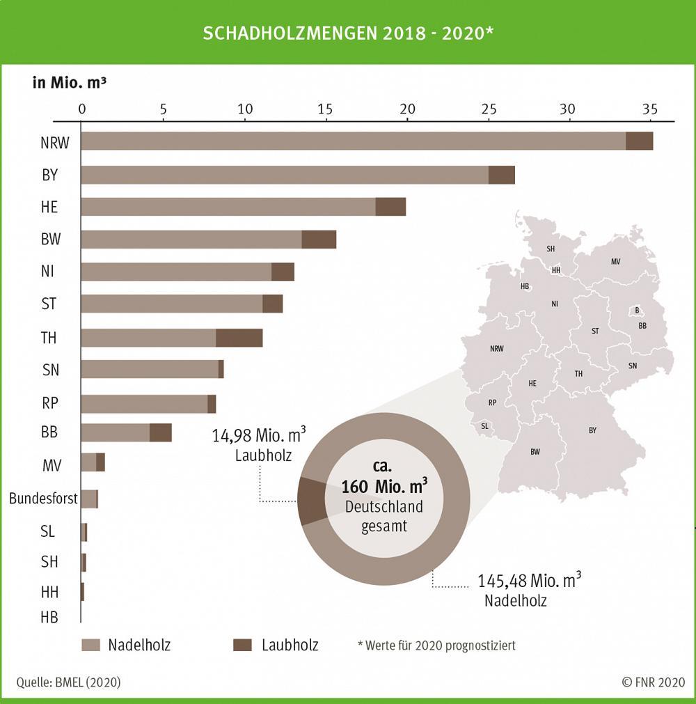 Schadholzmengen 2018 2020 abb 271 k 2020