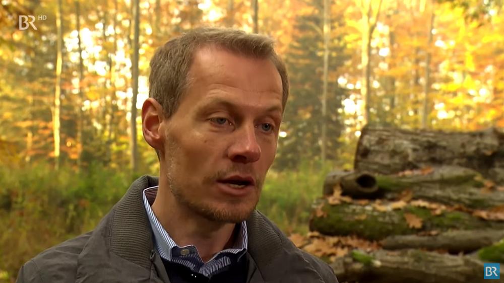 """Buche als Bauholz – Bayerischer Rundfunk berichtet in """"Unser Land"""" und im """"Notizbuch"""""""